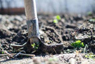 Wybieramy najlepsze narzędzia ogrodnicze